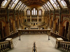 London _287 (Maharepa) Tags: leica london museum architecture design hall digilux2 empty symmetry naturalhistorymuseum photodesign maharepa fotodesign pointofinterest
