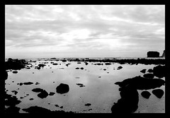 Lost at Sea (alterednate) Tags: ocean sea bw usa reflection beach water clouds coast washington pacific olympicpenninsula fcsea