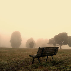 Lost (eyecatcher) Tags: park love nature fog garden bench lost australia longing eyecatcher specialtwo