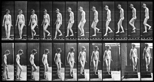 Woman Walking Down the Stairs by Muybridge