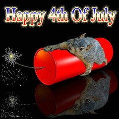 4th of July Squirrel (Terry_Lea) Tags: july fourth photoshopfun tbas