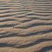 Coney Island's Sand