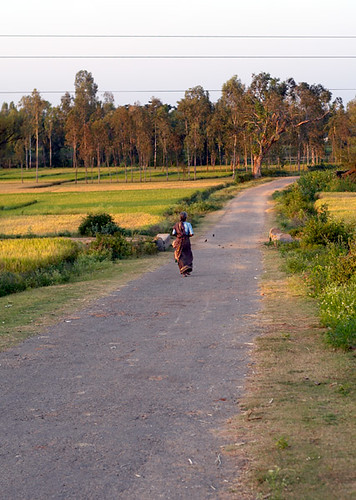 A Women Walks Through the Countryside in Karnataka