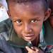 Young Somalilander