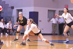 IMG_8372 (SJH Foto) Tags: girls volleyball high school york delone catholic team teen teenager dig bump burst mode