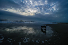 Playing on the beach (Costigano) Tags: beach outdoor sand sea curracloe ocean wexford ireland irish dog seaside coast shore dawn sky clouds