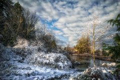 First Snow (Repp1) Tags: bc canada december landscape snow ice niege glace pond tang clouds nuages