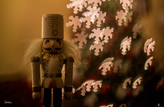 Bokeh - 348 / 366 Project (Tina Dean) Tags: 365project 366project 365project2016 366project2016 bokeh christmas nutcracker