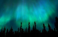 Northern Lights, Yukon, Canada