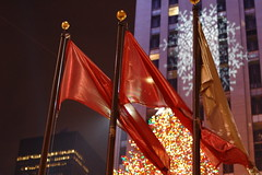 Red Flag Tree snowflake (lowlight168) Tags: snowflake nyc red tree slr digital d50 50mm nikon flag lowlight168