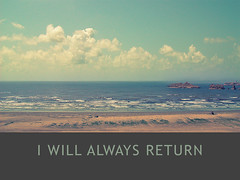I Will Always Return (Wallpaper) (Edge of Space) Tags: wallpaper beach reflective karachi clifton iwillalwaysreturn