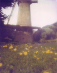 windmill and poppies (erin_designr) Tags: goldengatepark windmill polaroid 2006 poppies 4x5 zoneplate fieldcamera