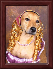 My dog dressed as Goldilocks (^hSirius) Tags: dog dogs pets doggy doggie goldilocks mutt mongrel rapunzel mixed breed blond long hair longhair canon 20d canon20d petportrait party shortlegdog dogportrait portrait animalportrait bigears largeears big ears cute studio studioportrait studiophotography professional adorable cutest beautifulportrait beautifuleyes k9 cutepuppy canine animal animals pet beautifuldog beautifuldogs fur furry paw nose eyes cutedog cutedogs interestingness explore favorites views favorite favourite halloween costume fairytale flickrglam dogcostume dogsincostume dogincostume halloweencostume halloweendogs dogdress doghairstyle beautifulblonde