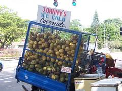 johnny's coconuts (jeanniey) Tags: geotagged zonetag coconut portofspain trinidadandtobago geolat106685983333 geolong615188466667