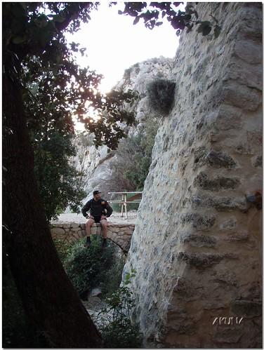 Trail OFF sainte victoire 2007 (161)reworked