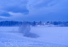 Blue afternoon (Krogen) Tags: winter nature norway landscape norge vinter natur norwegen olympus c7070 noruega scandinavia akershus romerike krogen landskap noorwegen noreg ullensaker skandinavia jessheim nordbytjernet