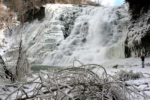 Winter/Falls