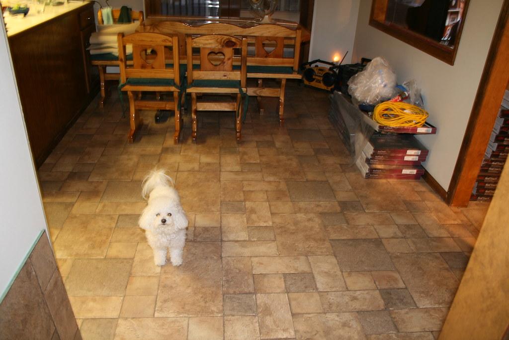 New Flooring 3