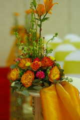arrangement in yellow and orange (clickr100) Tags: 50mm pentax 1point4 smcpfa50mmf14