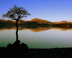 Serenity on Loch Lomond (Nicolas Valentin) Tags: blue mountain lake reflection tree water landscape freedom scotland still scenery bleu lochlomond
