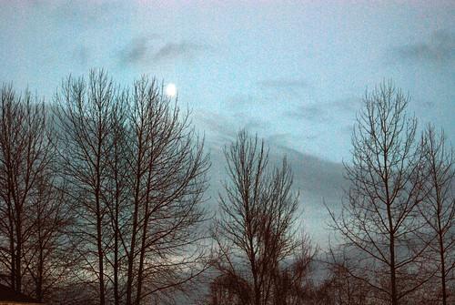February 8, 2007