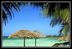 Postcard from Paradise (redmann) Tags: sea vacation sun beach nature beauty geotagged sand surf politics cuba playa palm palmtree frame caribbean thecontinuum sigma18200dc canon400d geo:tool=gmif geo:lat=21349902 villacovarrubias polapa geo:lon=76661954 postcardoftheweek