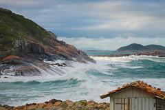 Praia do Mao (hades.himself) Tags: praia nikon frias luis nikkor pinheira d40 balbinot 1855mmf3556gediiafsdx
