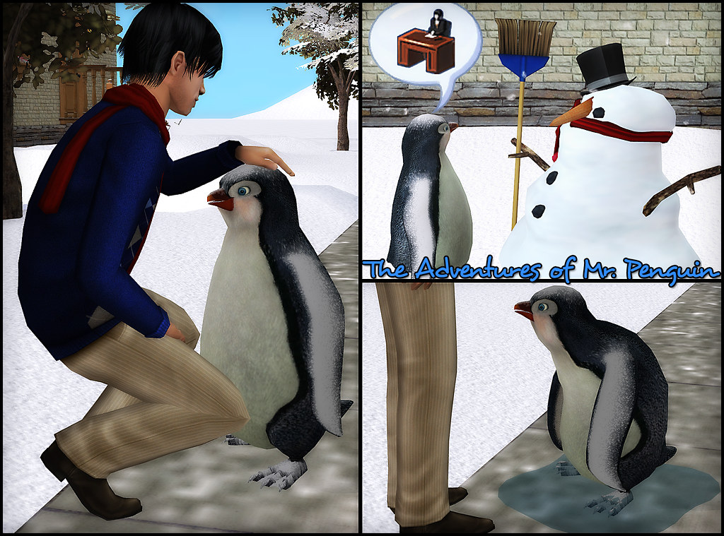 The Adventures of Mr. Penguin