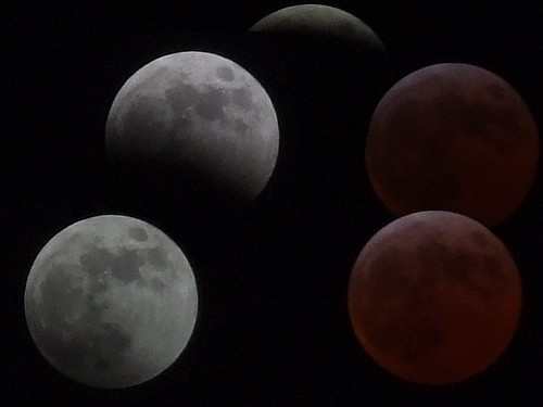 Montage showing last night's eclipse