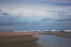Endless beach (-=Cheese=-) Tags: newzealand auckland nz karekarebeach
