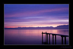 (xim-crow) Tags: lake sunrise landscape schweiz switzerland purple suisse minolta lac paysage lman 2007 vaud levdesoleil stprex dynax5d genevalunch ximcrow