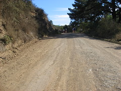 Just running (jakerome) Tags: california people bicycling catalina losangeles marathon running uphill mobileposts jakepix bocm catalinamarathon catalinamarathonrunning