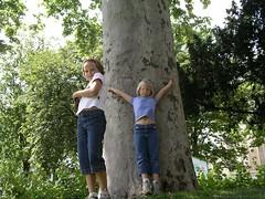 Tree in Paris (TranceMist) Tags: park portrait paris france flickr play carina natalie playtime europe2005 avenuedenewyork iledefrance avenuealbertdemun esplanadebernardduperier