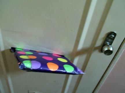 Pack_Door.JPG