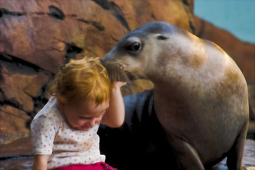 Give Us A Kiss at Underwater World