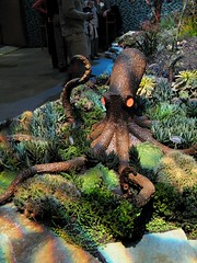 Octopus (joeysplanting) Tags: octopus succulents sanfranicscoflowergardenshow sffgs2007