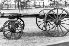 Carreta (Alvimann) Tags: alvimann canon canoneos550d canon550d canoneos carreta transport transportation transporte old classic viejo antique antiguo rueda wheel madera wood wooden