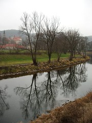 The Sázava River