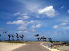 okinawa - typhoon on emerald beach ([andreea]) Tags: japan clouds landscape casio 日本 okinawa 沖縄 nuages 雲 exilim japon typhoon 風景 exz50 台風 emeraldbeach エメラルドビーチ