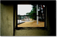 solitary window - by tetsu-k.