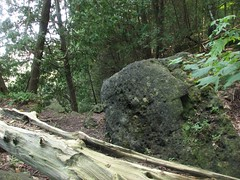 Kelso Hiking Sept 06 157 (travellingzenwolf) Tags: hiking kelso escarpment zenwolf