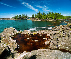 rock pool (Dave Mantel) Tags: color landscape tofino bc westcoast ocean trees