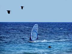 Forward... (esther**) Tags: blue sea sky beach colors birds mare wind greece windsurfing rhodes ixia interestingness298 interestingness436 interestingness248 abigfave