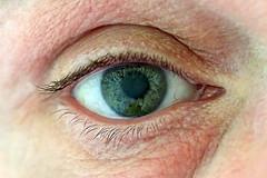 eye (Leo Reynolds) Tags: eye me canon eos utata 60mm f4 iso1600 30d selfie 0ev canonefs60mmf28macrousm utatafeature hpexif 0017sec leol30random grouputata grouptwtme threadtwtme xintx threadtwtme5thu xratio32x xleol30x