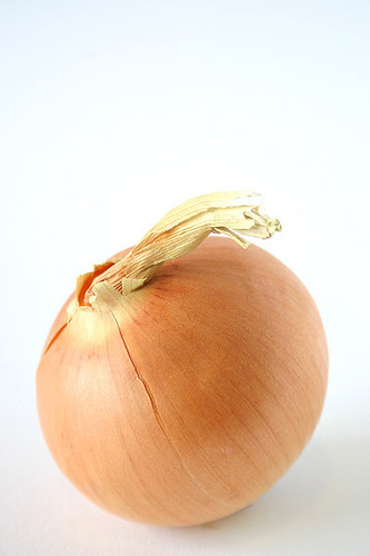 allium cepa: the onion