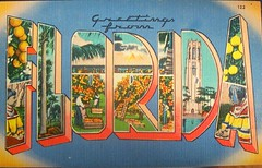 Greetings from Florida (Shani's Stuff) Tags: vintage florida postcard letter floridana largeletter