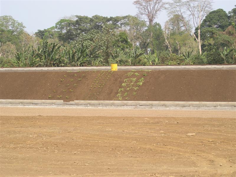 Equatorial Guinea (Isla