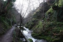 Alva - Alva glen looking down (-SiPeKi-) Tags: alva nature scotland waterfall glen clackmannanshire