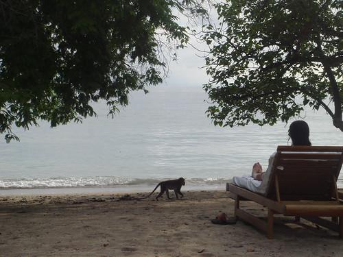 jenna on the beach moyo island