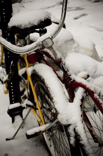 Bikes, snow